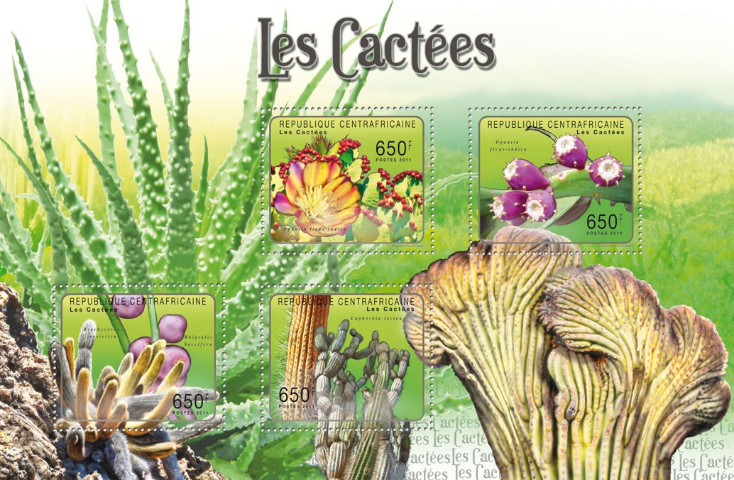 Cactuses. - Issue of Central African republic postage stamps