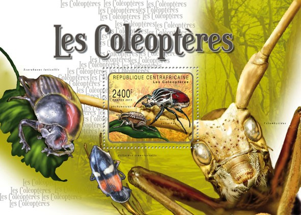 Beetles, (Goliatus goliatus). - Issue of Central African republic postage stamps