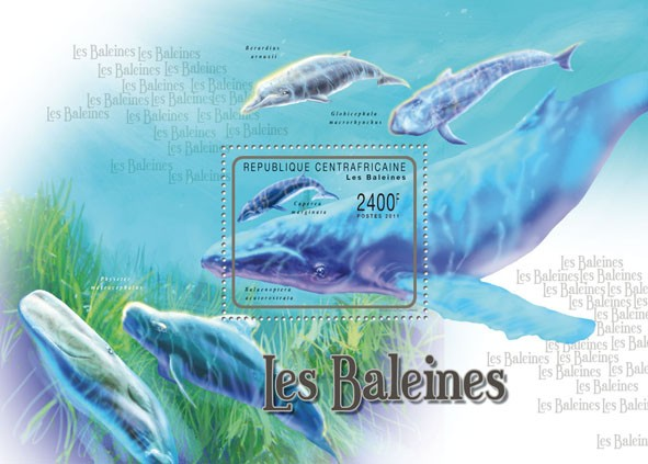 Whales, (Caperea marginata). - Issue of Central African republic postage stamps