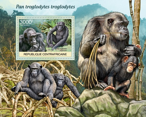 Monkeys, Pan troglodytes troglodytes. - Issue of Central African republic postage stamps
