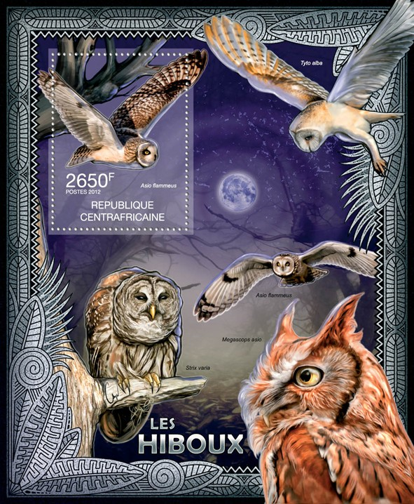 Owls, (Asio flammeus). - Issue of Central African republic postage stamps