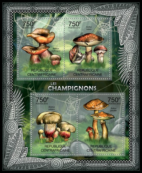 Mushrooms, (Boletus erythropus, Suillus grevillei). - Issue of Central African republic postage stamps