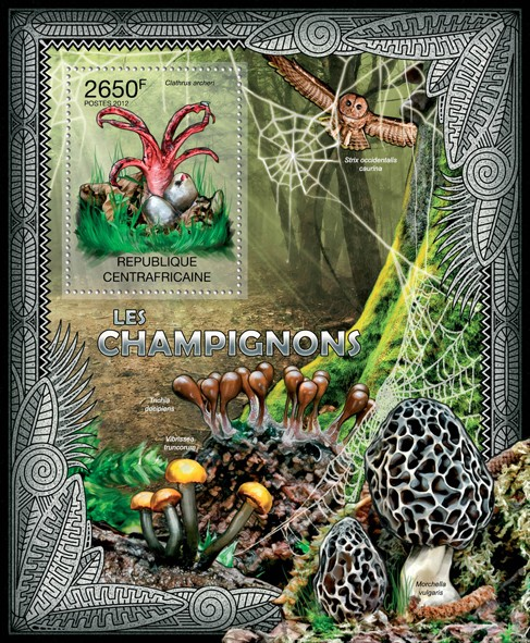 Mushrooms, (Clathrus archeri). - Issue of Central African republic postage stamps