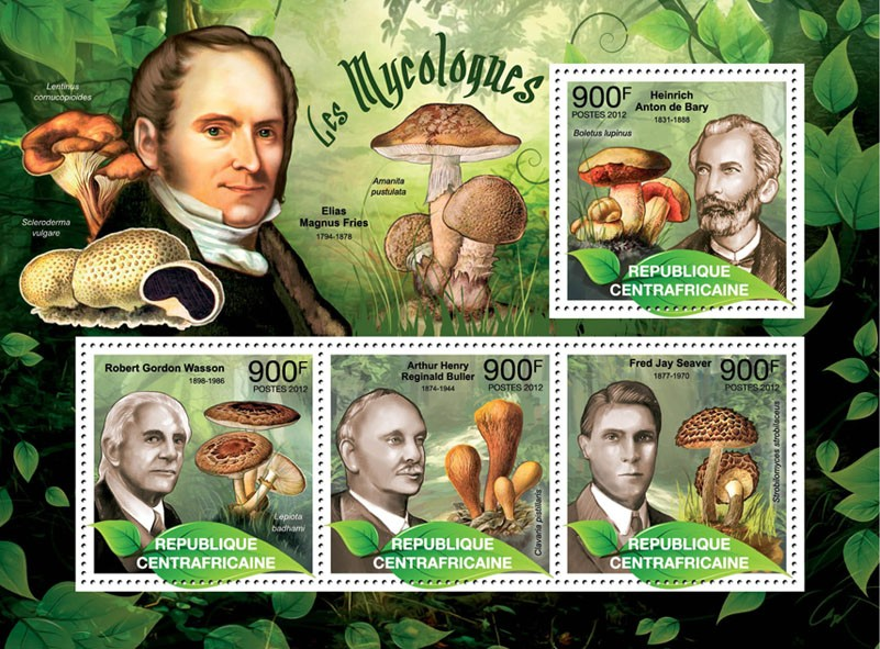 Mushrooms & Mycologists, (H.Anton de Bary, Boletus lupines). - Issue of Central African republic postage stamps