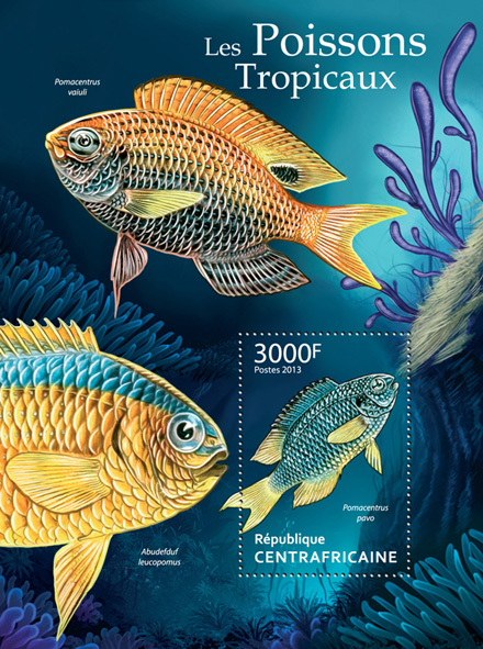 Tropical Fishes - Issue of Central African republic postage stamps