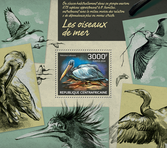 Seabirds - Issue of Central African republic postage stamps