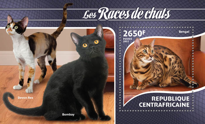 Cat - Issue of Central African republic postage stamps