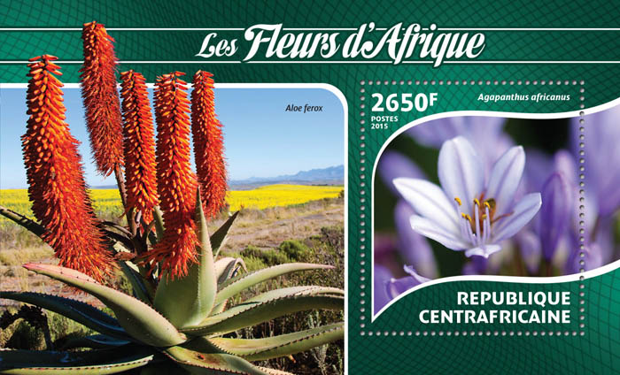Flowers - Issue of Central African republic postage stamps