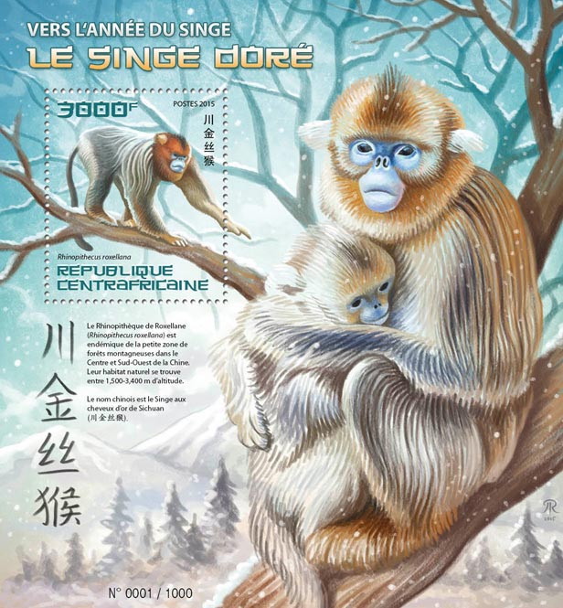 Year of the monkey - Issue of Central African republic postage stamps