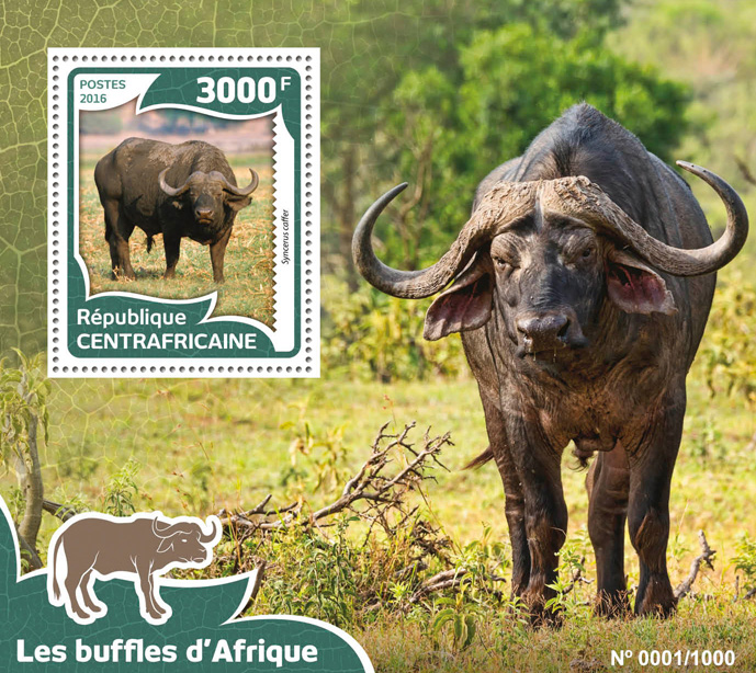 African buffalos - Issue of Central African republic postage stamps