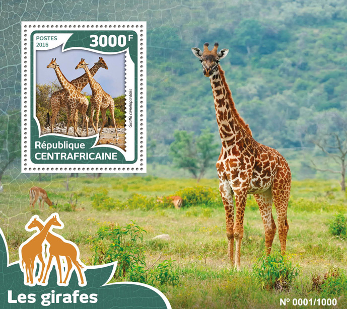 Giraffes - Issue of Central African republic postage stamps