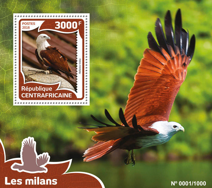 Kites birds - Issue of Central African republic postage stamps