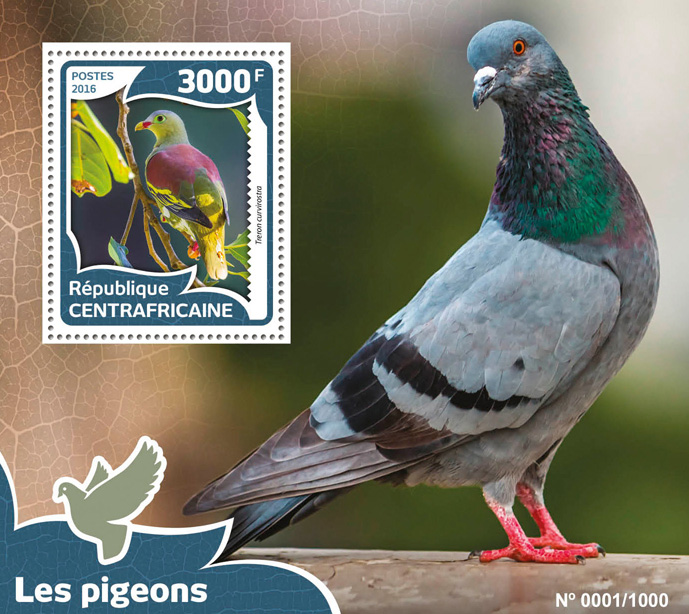 Pigeons - Issue of Central African republic postage stamps