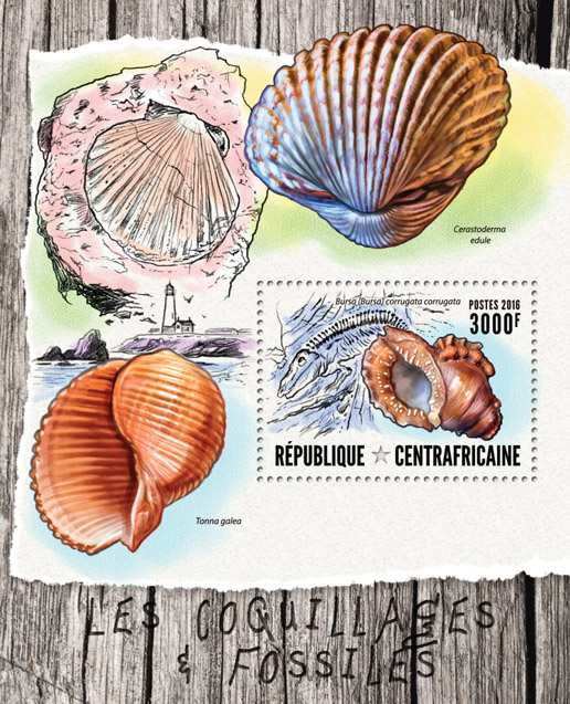 Seashells and fossils - Issue of Central African republic postage stamps