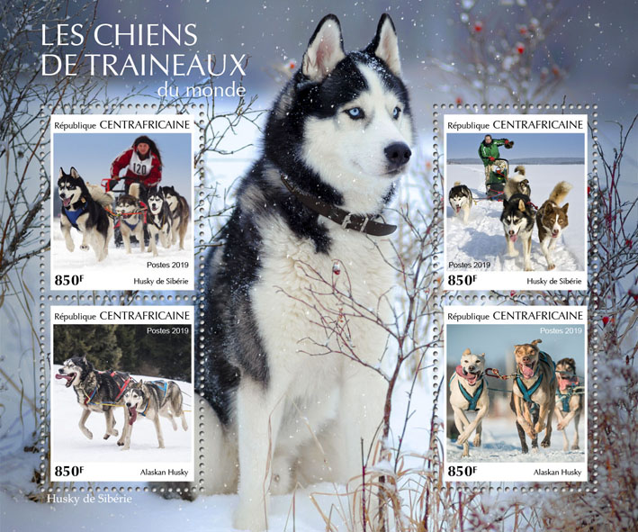 Sledge dogs - Issue of Central African republic postage stamps