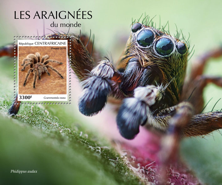 Spiders - Issue of Central African republic postage stamps