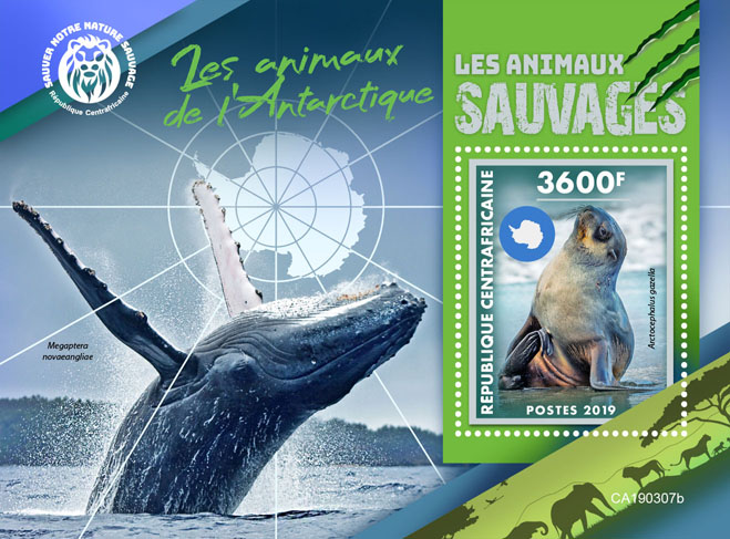 Antarctic animals - Issue of Central African republic postage stamps