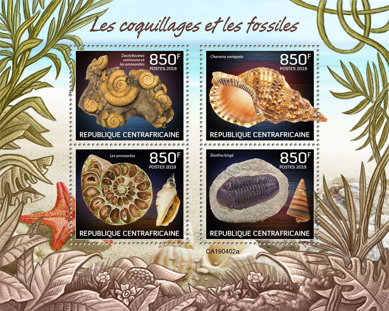 Shells and fossils - Issue of Central African republic postage stamps