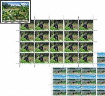 central-african-rep-centrafrique-12-03-2019-code-calc190101a-calc190109b.jpg
