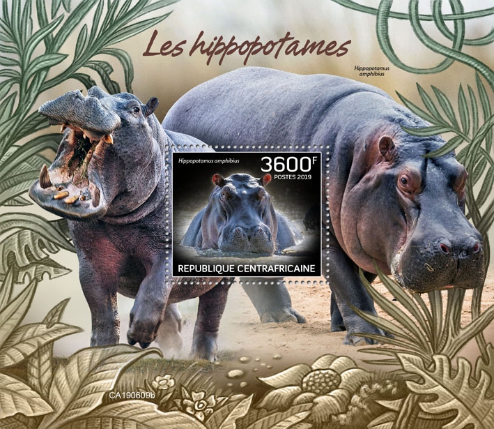 Hippopotamus - Issue of Central African republic postage stamps