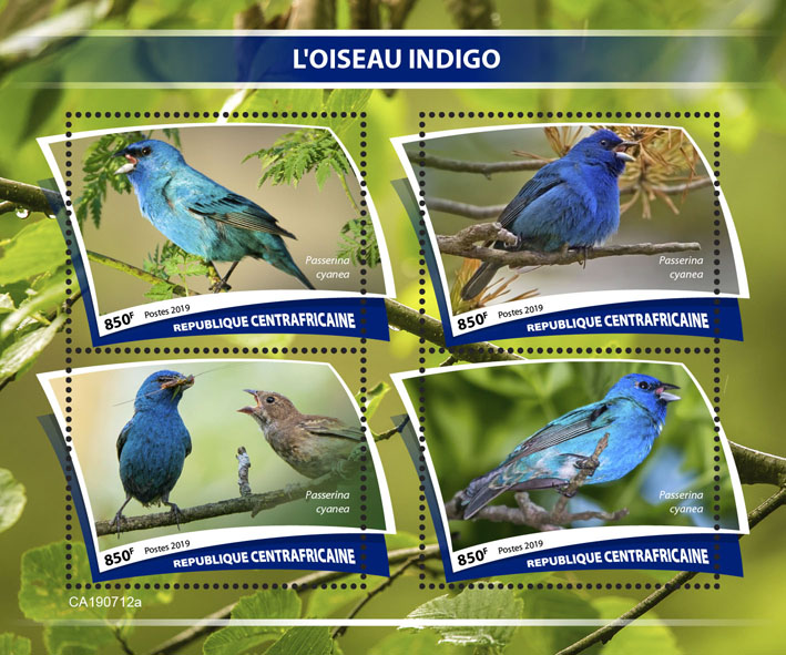 Indigo bird - Issue of Central African republic postage stamps