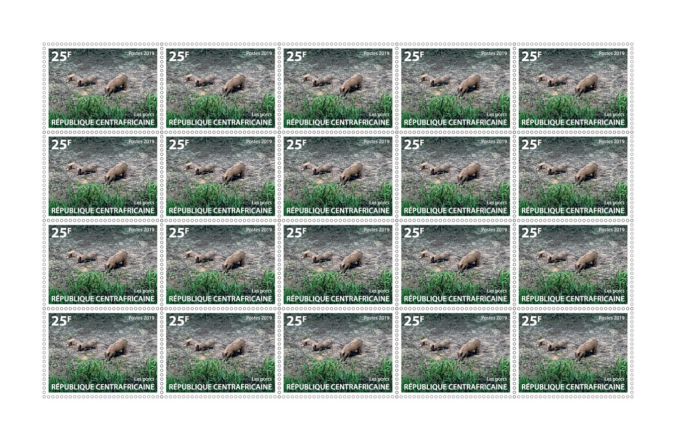 Pigs - Issue of Central African republic postage stamps
